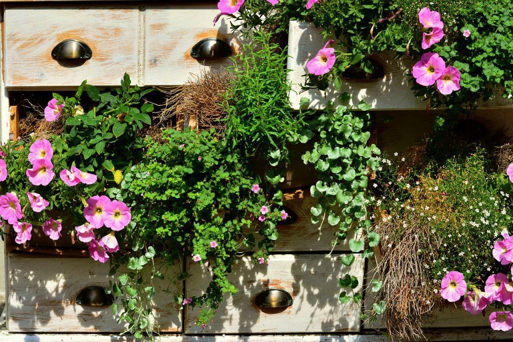 Como montar um jardim de flores na sua casa_dica 2