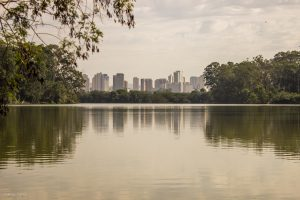 Lugares em São Paulo para morar sem ter um carro