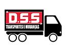 DSS Mudanças